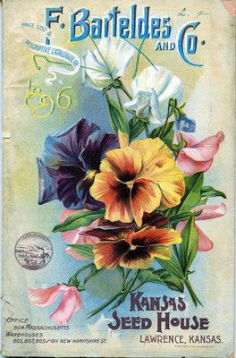 flower seed packet