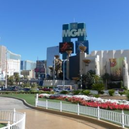 A Day In The Life…Hello From  Las Vegas!
