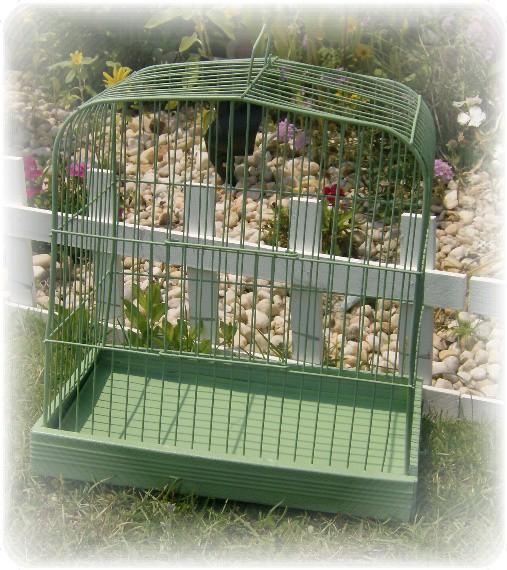 vintage green bird cage