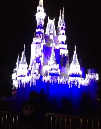 Magic Kingdom Castle at Christmas