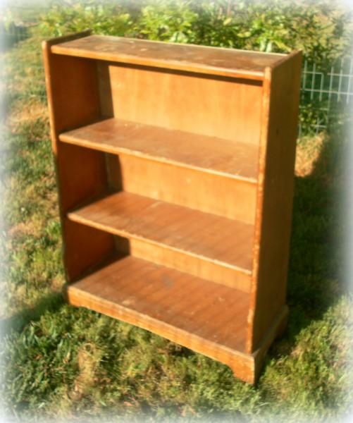 $5 Thrift Store Bookshelf
