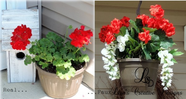 real or faux geraniums