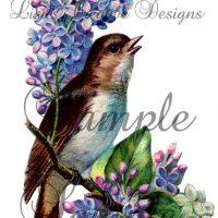 Printable Vintage Bird Image