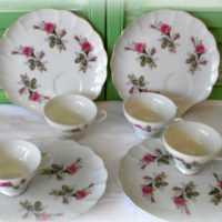 Vintage Japan Moss Rose China Luncheoan Snack set