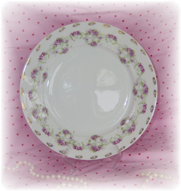 Antique Austrian China Plate