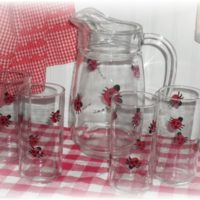 Hand Painted Country Lady Bug Glass and Pitcher Set