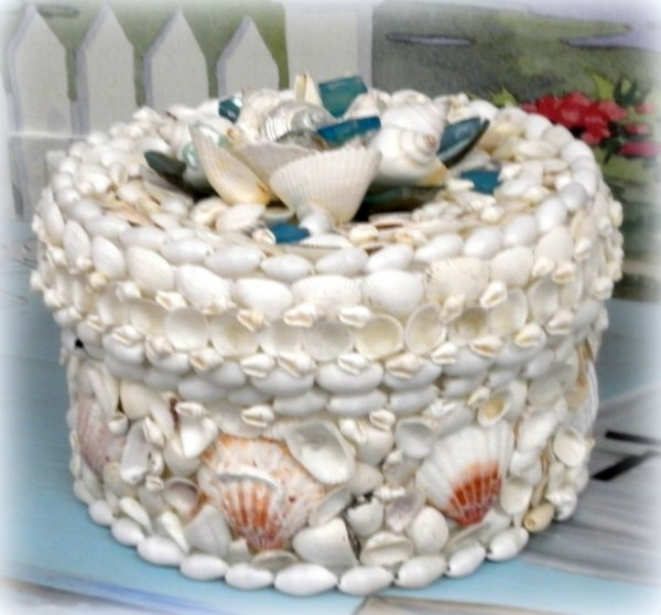 Seashell Storage Box