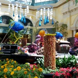 The Prettier Side Of Vegas Part 1: The Bellagio's Conservatory