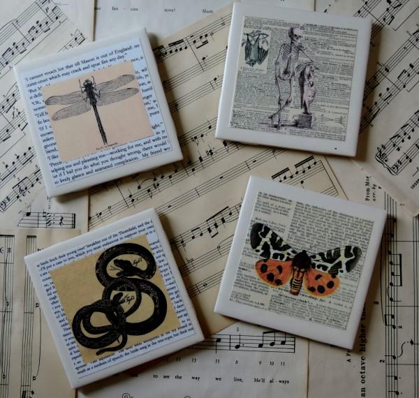 Vintage Nature Inspired Macabre Ceramic Tile Coaster Set