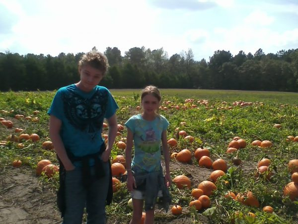 Pumpkin Picking In The Country Mike's Farm