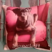Double Sided Personalized Pet Photo Gift Throw Pillow
