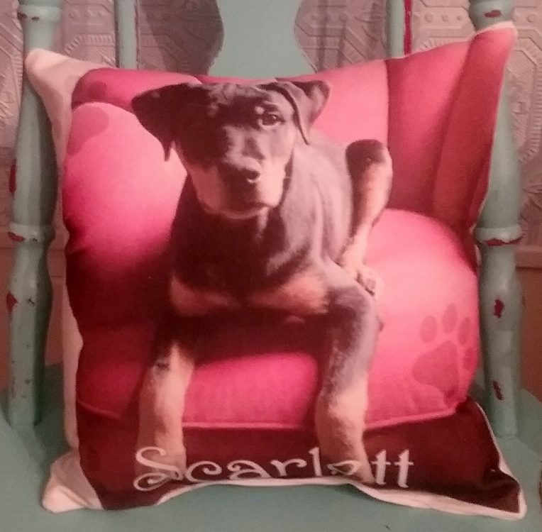 Personalized Pet Photo Gift Throw Pillow