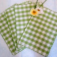 Spring Cottage Lime Green Gingham Check Fabric Placemats