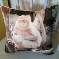 Monkey Nature Wildlife Pillow