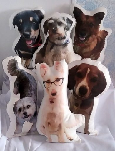 Custom Made Pet Photo Pillow, Pet Portrait Pillow