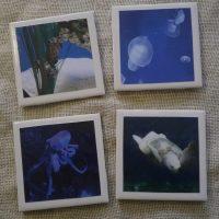Handmade Underwater Marine Life Sea Creature Coaster Set