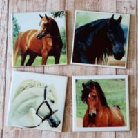 Beautiful Horse Photo Coaster Set Horse Lover gift