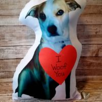 Personalized Huggable Valentine Pet Photo Pillow