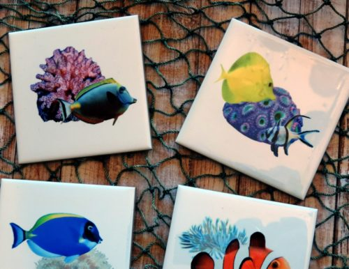Saltwater Fish Coasters