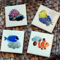 Saltwater Tropical Fish and Coral Coaster Set