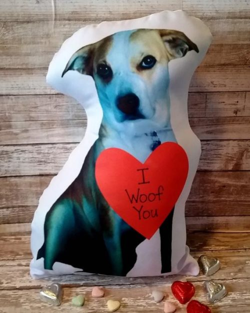 Valentine Dog Photo Pillow